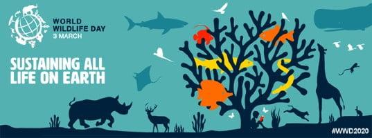 world-wildlife-day-banner